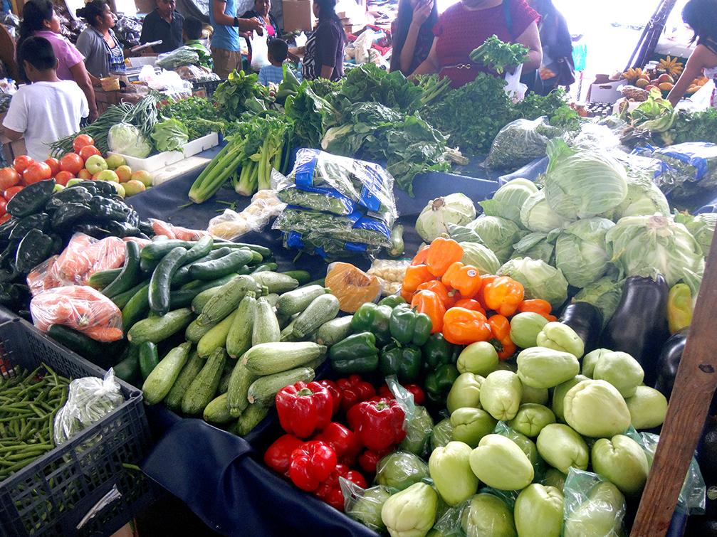 Redland-Market-Village-Farmers-Market-Fresh-Vegetables-3