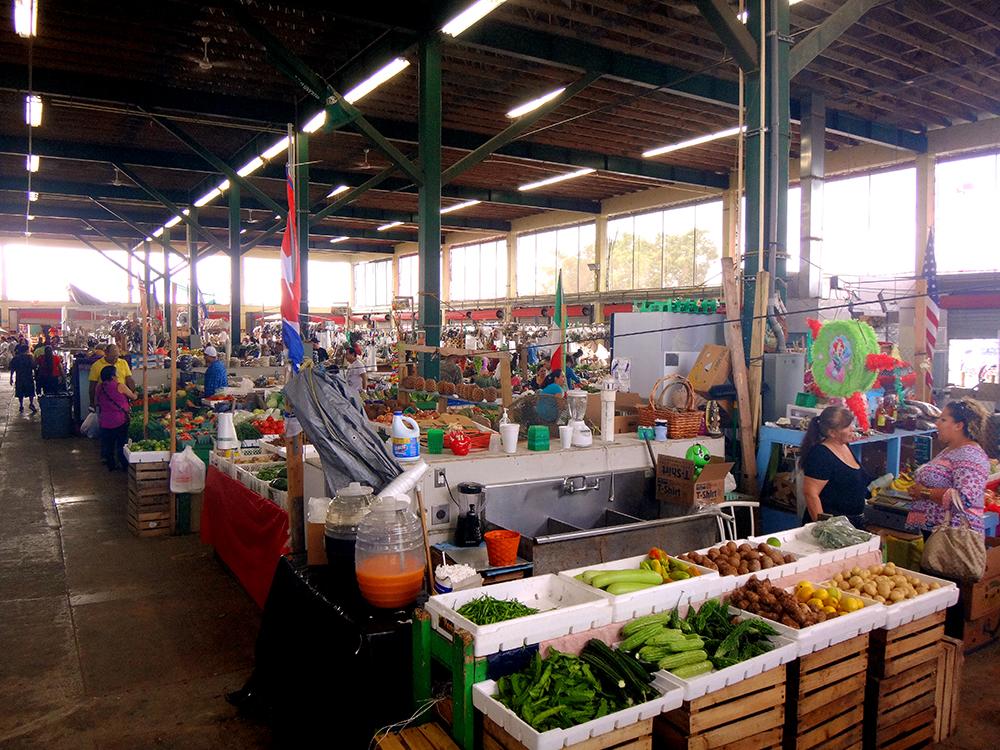 Redland-Market-Village-Farmers-Market