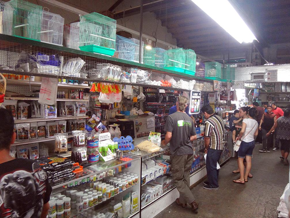 Redland-Market-Village-Pet-Shop