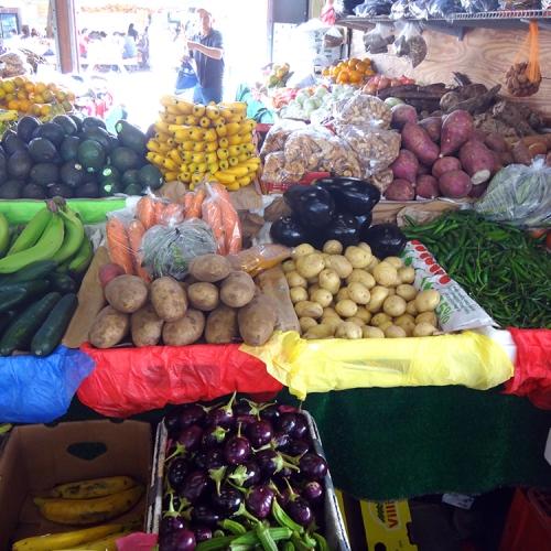 Redland-Market-Village-Farmers-Market-3