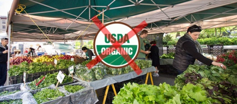 Organic Label –  Does that mean it was made without man-made chemicals?